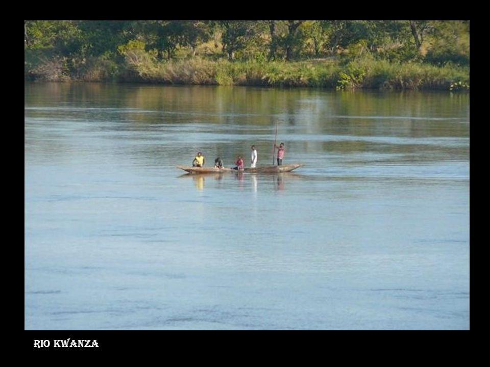 Rio Cuango - Lunda