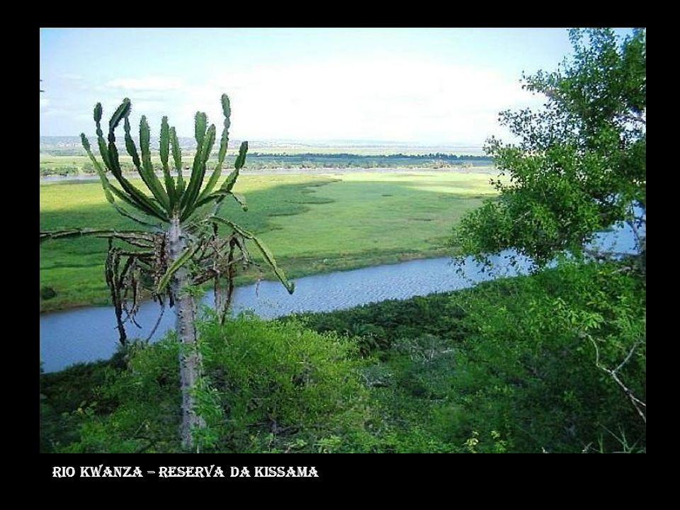 Rio kwanza – reserva da kissama