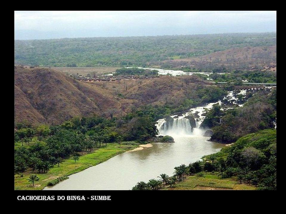 Estuário do rio zaire