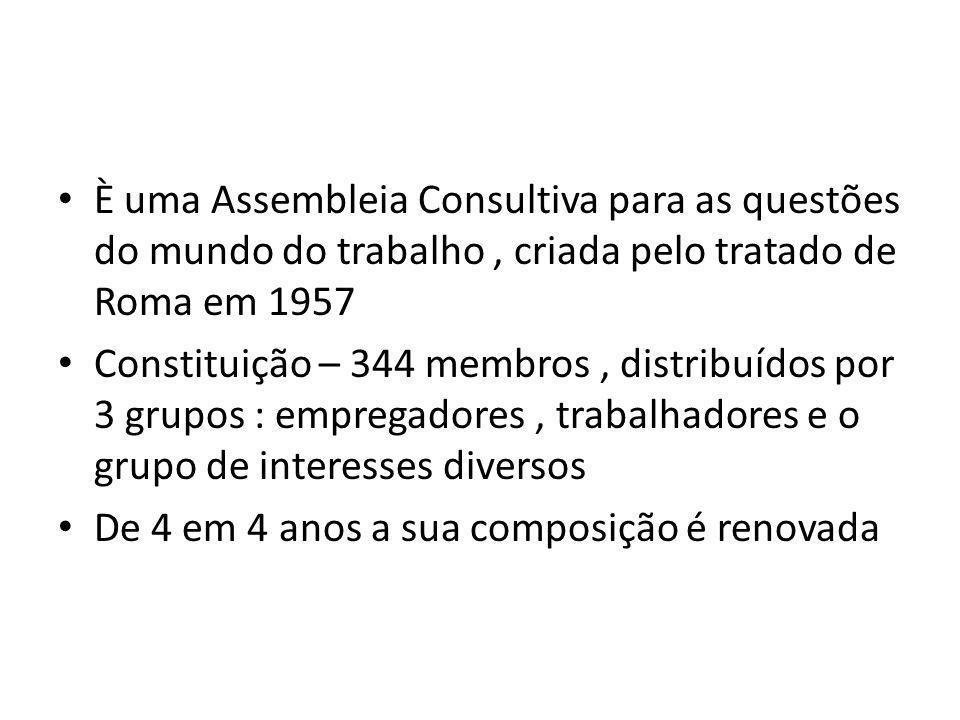 È uma Assembleia Consultiva para as questões do mundo do trabalho, criada pelo tratado de Roma em 1957 Constituição – 344 membros, distribuídos por 3 grupos : empregadores, trabalhadores e o grupo de interesses diversos De 4 em 4 anos a sua composição é renovada