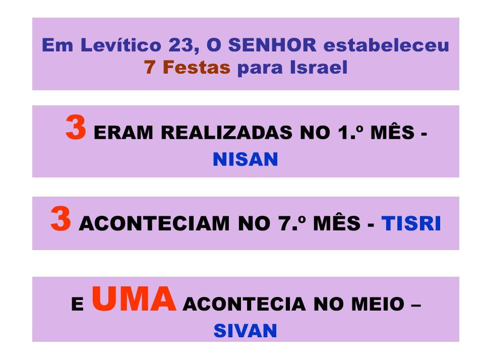 3 ERAM REALIZADAS NO 1.º MÊS - NISAN 3 ACONTECIAM NO 7.º MÊS - TISRI E UMA ACONTECIA NO MEIO – SIVAN Em Levítico 23, O SENHOR estabeleceu 7 Festas para Israel