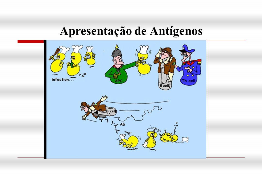 Apresentação de Antígenos