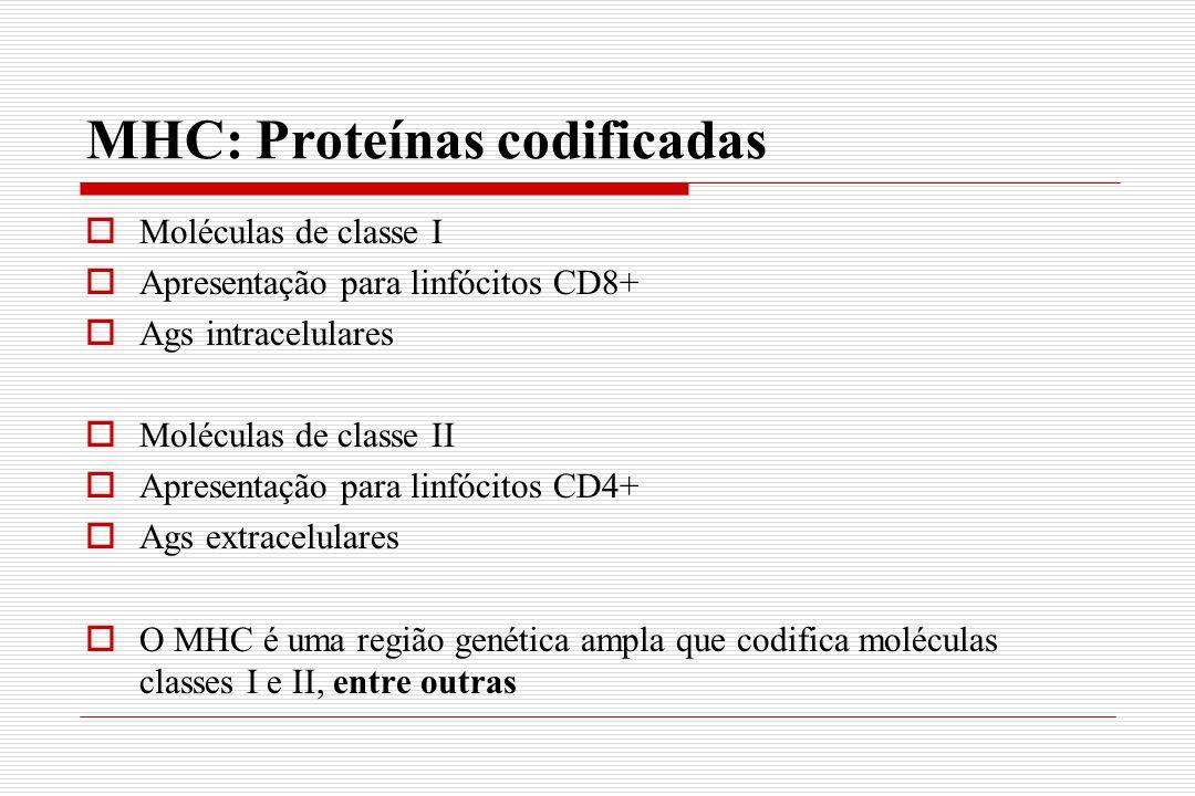 MHC: Proteínas codificadas  Moléculas de classe I  Apresentação para linfócitos CD8+  Ags intracelulares  Moléculas de classe II  Apresentação pa