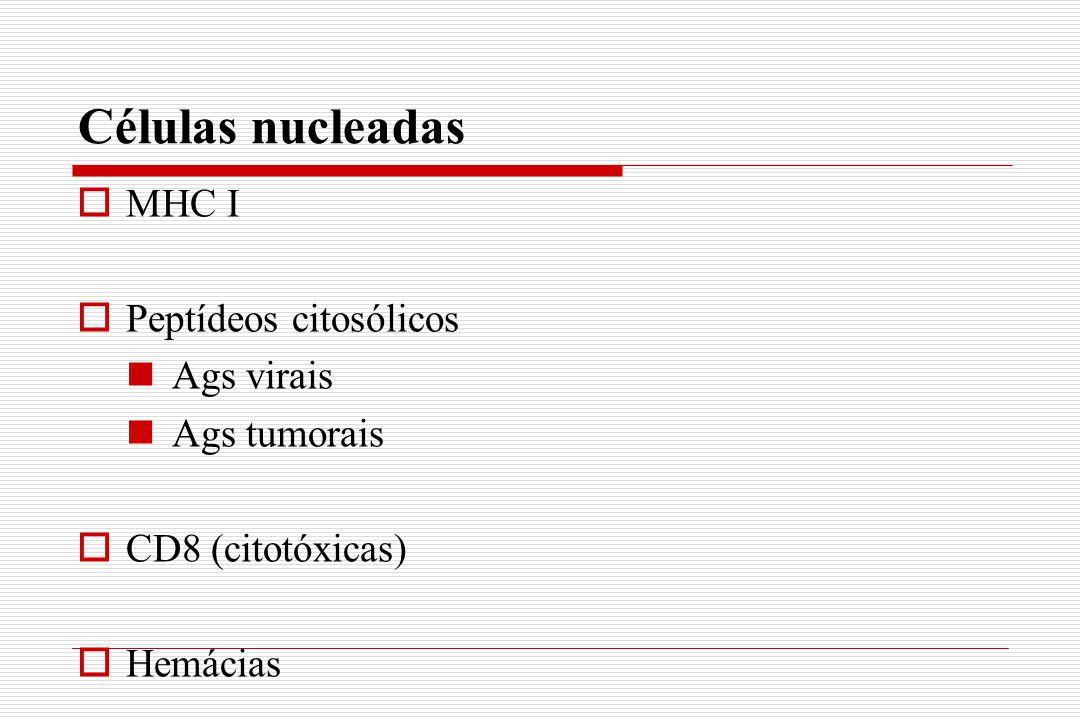 Células nucleadas  MHC I  Peptídeos citosólicos Ags virais Ags tumorais  CD8 (citotóxicas)  Hemácias