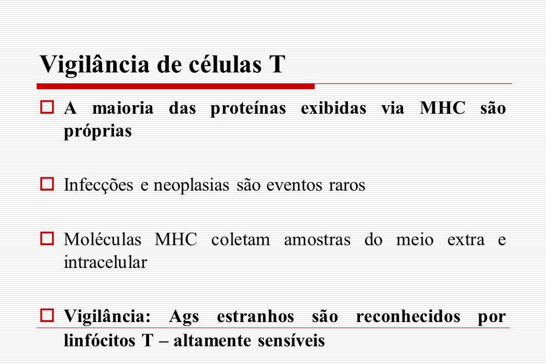 Vigilância de células T  A maioria das proteínas exibidas via MHC são próprias  Infecções e neoplasias são eventos raros  Moléculas MHC coletam amo