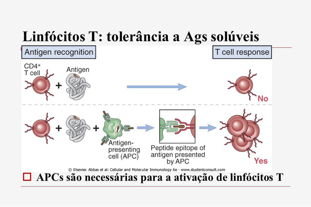 Linfócitos T: tolerância a Ags solúveis  APCs são necessárias para a ativação de linfócitos T