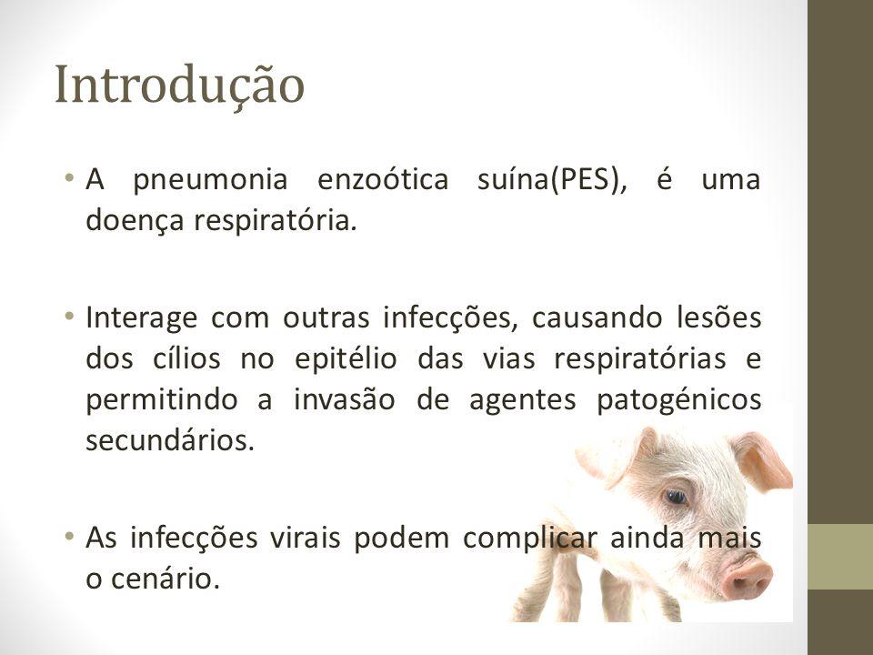 História A doença surgiu quando os animais passaram a ser domesticados.