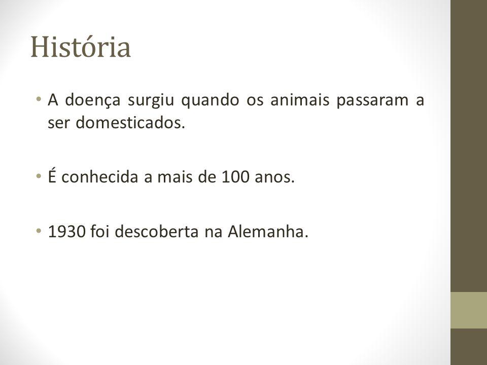 História A doença surgiu quando os animais passaram a ser domesticados. É conhecida a mais de 100 anos. 1930 foi descoberta na Alemanha.
