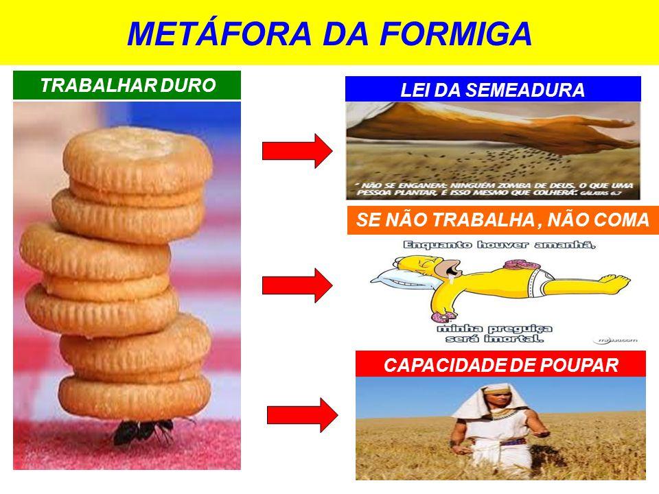 METÁFORA DA FORMIGA CAPACIDADE DE POUPAR LEI DA SEMEADURA SE NÃO TRABALHA, NÃO COMA TRABALHAR DURO