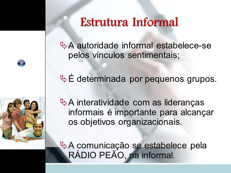 Estrutura Informal  A autoridade informal estabelece-se pelos vínculos sentimentais;  É determinada por pequenos grupos.  A interatividade com as l