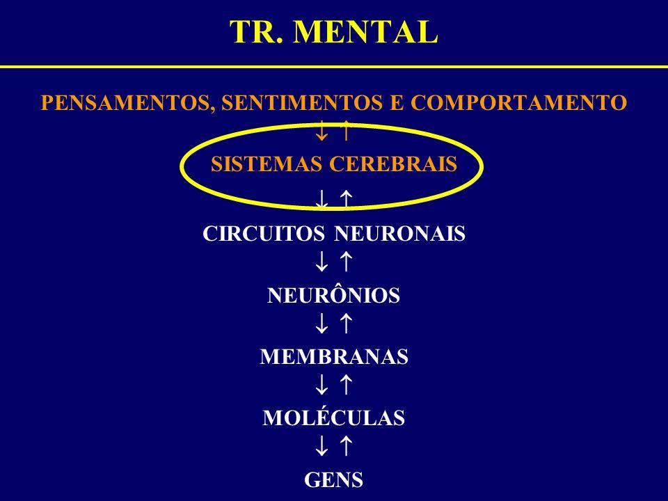 TR. MENTAL PENSAMENTOS, SENTIMENTOS E COMPORTAMENTO   SISTEMAS CEREBRAIS   CIRCUITOS NEURONAIS   NEURÔNIOS   MEMBRANAS   MOLÉCULAS   GENS