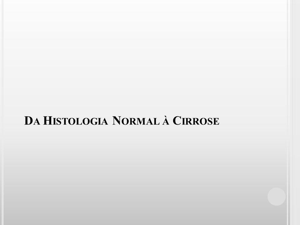 D A H ISTOLOGIA N ORMAL À C IRROSE