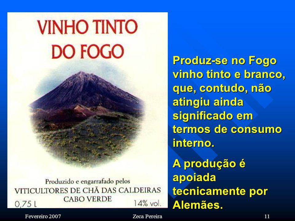 Fevereiro 2007Zeca Pereira10 Ilha do Fogo – Cabo Verde Saindo da paisagem lunar do vulcão, entra-se num aprazível parque florestal protegido de beleza indescritível.