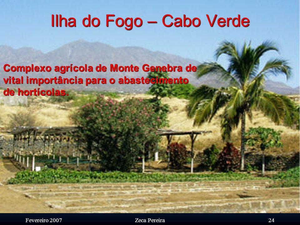 Fevereiro 2007Zeca Pereira23 Ilha do Fogo – Cabo Verde O contributo da ilha do Fogo para a produção alimentar em Cabo Verde reveste-se da maior import