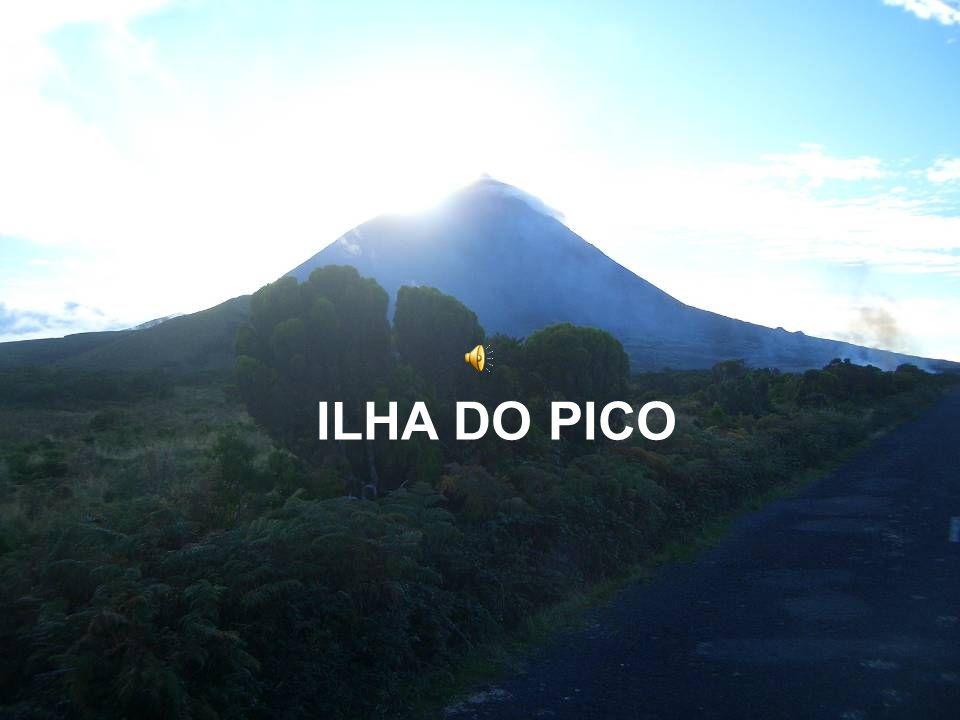 Ilha do Pico... ilha mágica!
