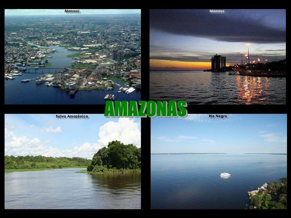 AMAZONAS AMAZONAS
