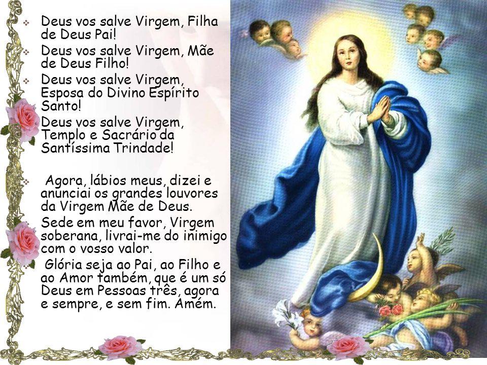  Deus vos salve Virgem, Filha de Deus Pai. Deus vos salve Virgem, Mãe de Deus Filho.