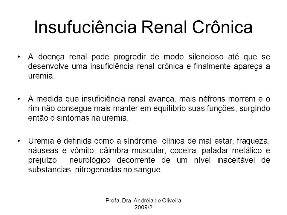 Profa. Dra. Andréia de Oliveira 2009/2 Insufuciência Renal Crônica A doença renal pode progredir de modo silencioso até que se desenvolve uma insufici