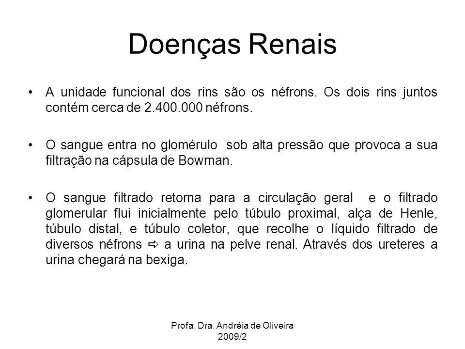 Profa. Dra. Andréia de Oliveira 2009/2 Doenças Renais A unidade funcional dos rins são os néfrons. Os dois rins juntos contém cerca de 2.400.000 néfro