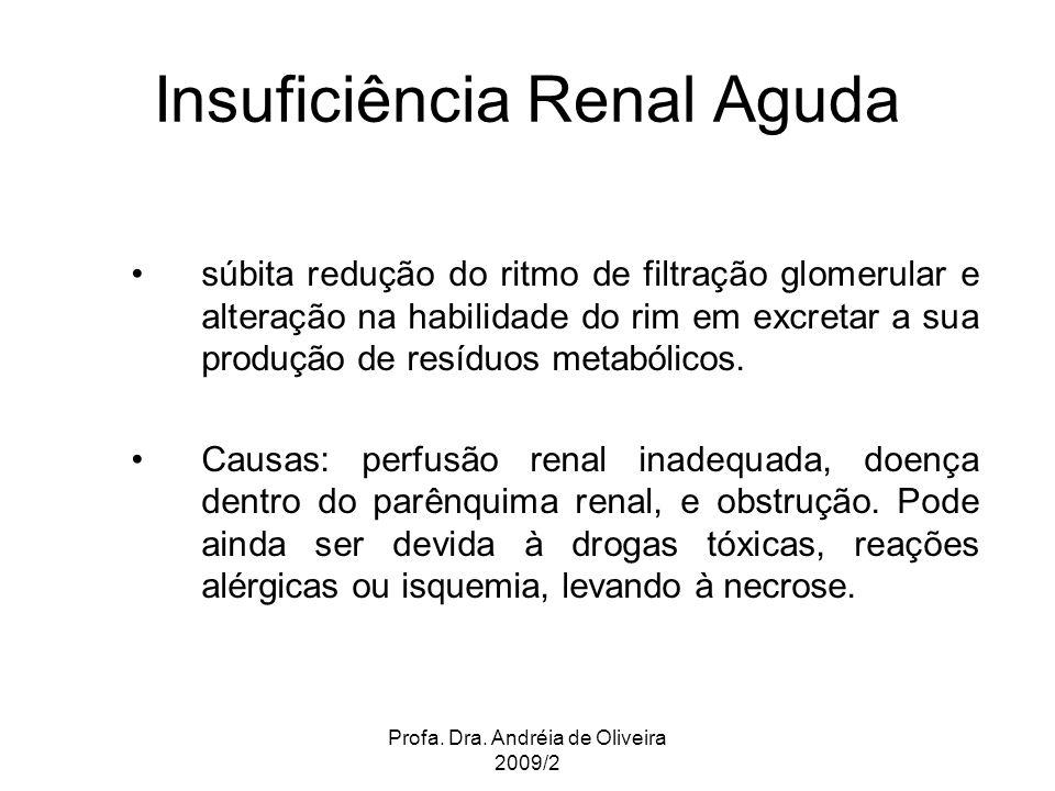 Insuficiência Renal Aguda súbita redução do ritmo de filtração glomerular e alteração na habilidade do rim em excretar a sua produção de resíduos meta