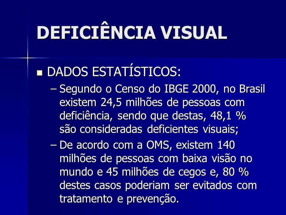 DEFICIÊNCIA VISUAL DADOS ESTATÍSTICOS: DADOS ESTATÍSTICOS: –Segundo o Censo do IBGE 2000, no Brasil existem 24,5 milhões de pessoas com deficiência, s