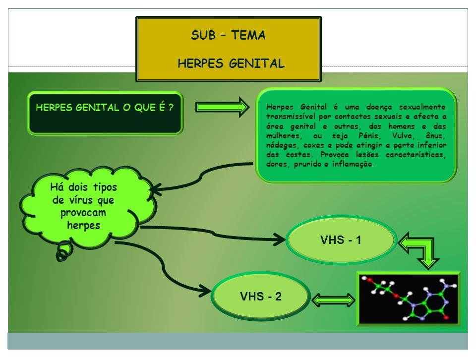 HERPES GENITAL O QUE É .