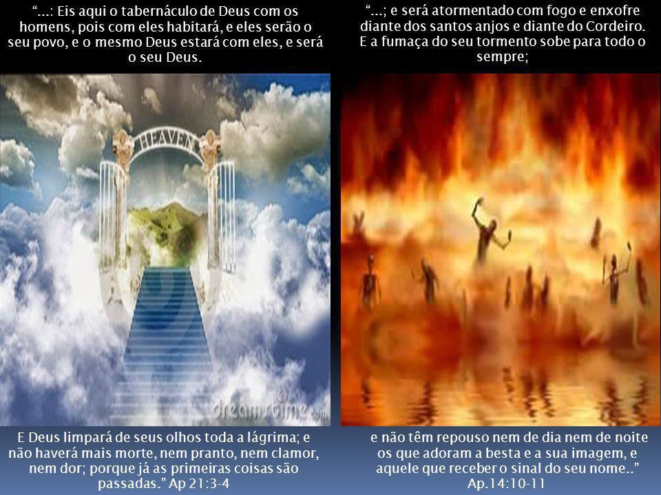 e não têm repouso nem de dia nem de noite os que adoram a besta e a sua imagem, e aquele que receber o sinal do seu nome.. Ap.14:10-11 E Deus limpará de seus olhos toda a lágrima; e não haverá mais morte, nem pranto, nem clamor, nem dor; porque já as primeiras coisas são passadas. Ap 21:3-4 ...: Eis aqui o tabernáculo de Deus com os homens, pois com eles habitará, e eles serão o seu povo, e o mesmo Deus estará com eles, e será o seu Deus.