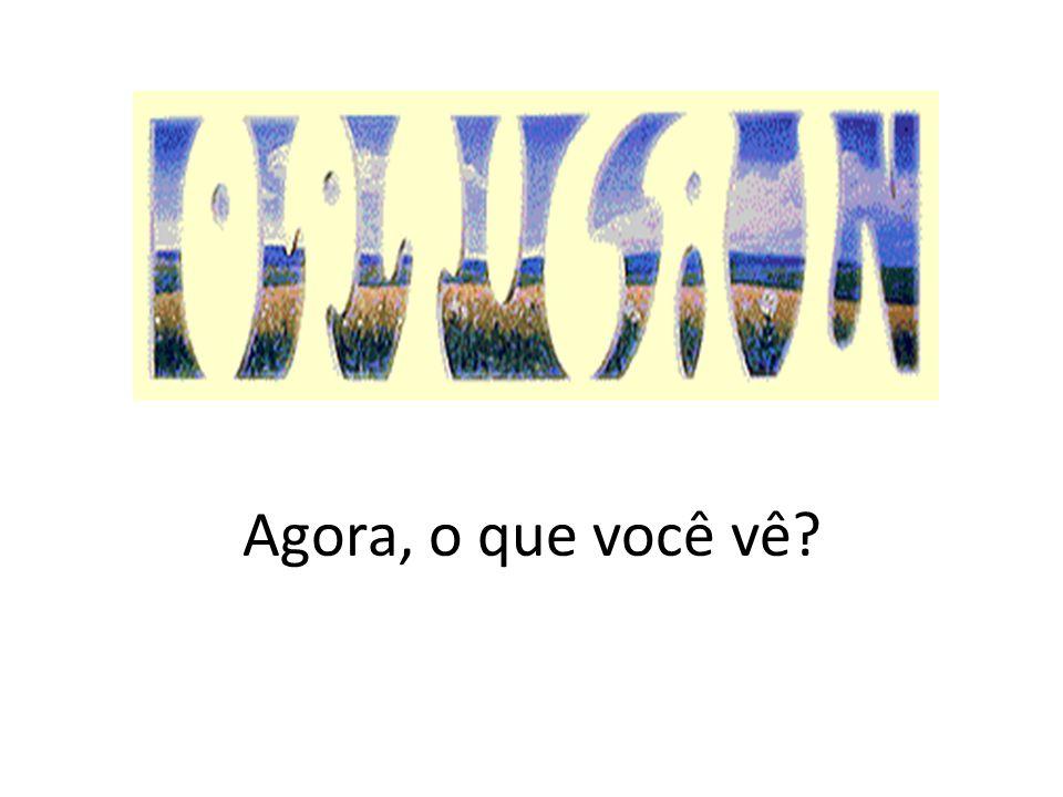 Você pode não ver isso à primeira vista, mas nos espaços em branco pode-se ler a palavra optical, na paisagem azul lê-se a palavra illusion.