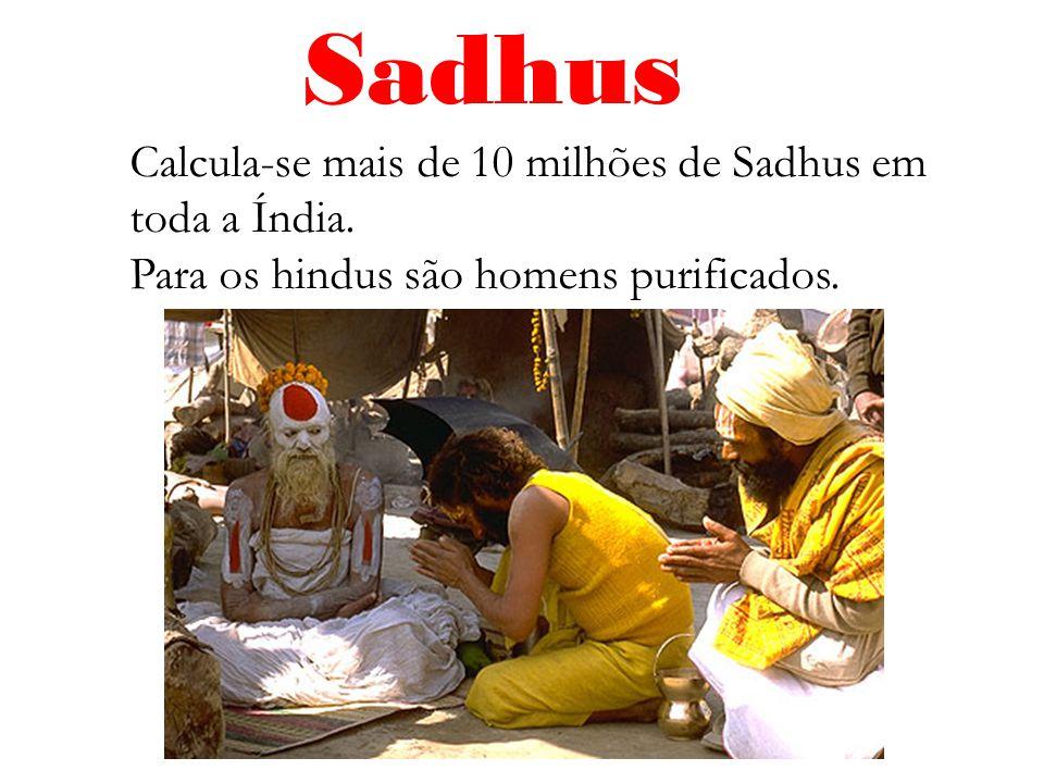 Sadhus Calcula-se mais de 10 milhões de Sadhus em toda a Índia. Para os hindus são homens purificados.