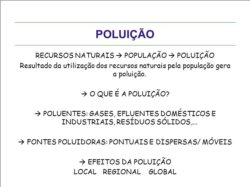 POLUIÇÃO RECURSOS NATURAIS  POPULAÇÃO  POLUIÇÃO Resultado da utilização dos recursos naturais pela população gera a poluição.  O QUE É A POLUIÇÃO?