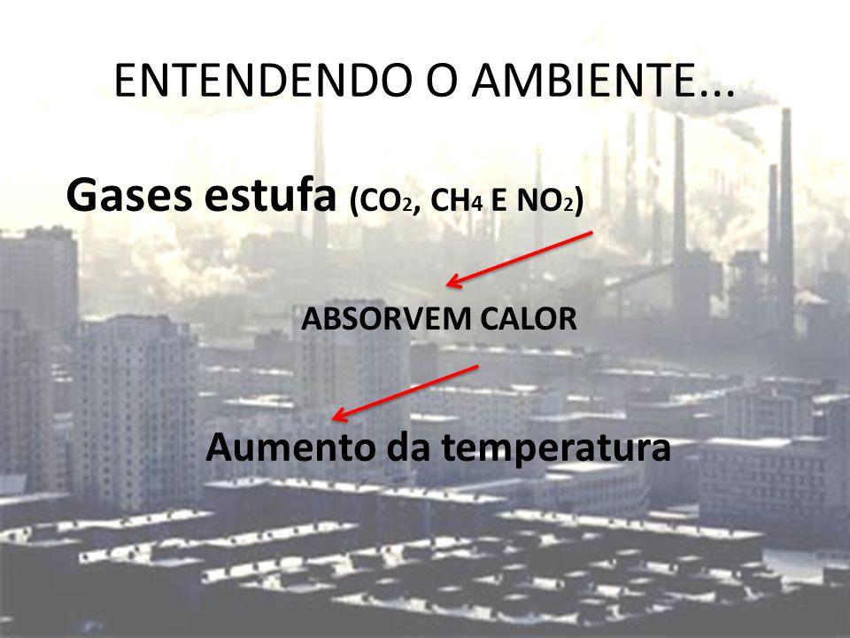 ENTENDENDO O AMBIENTE... Gases estufa (CO 2, CH 4 E NO 2 ) ABSORVEM CALOR Aumento da temperatura
