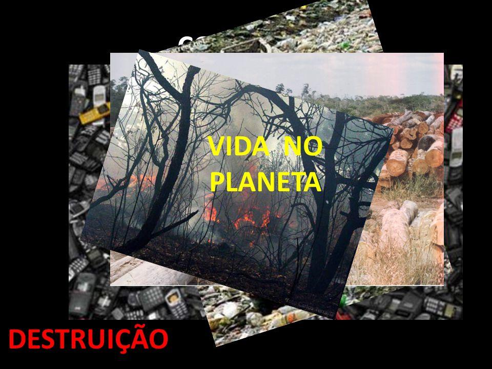 CONSUMO DESTRUIÇÃO VIDA NO PLANETA