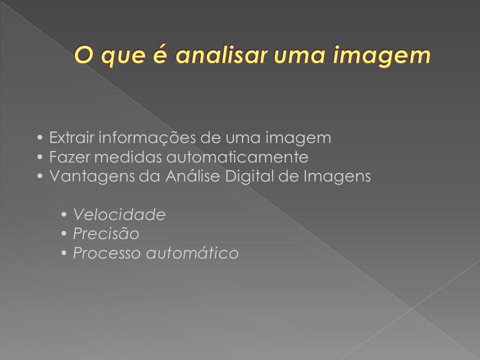 Extrair informações de uma imagem Fazer medidas automaticamente Vantagens da Análise Digital de Imagens Velocidade Precisão Processo automático