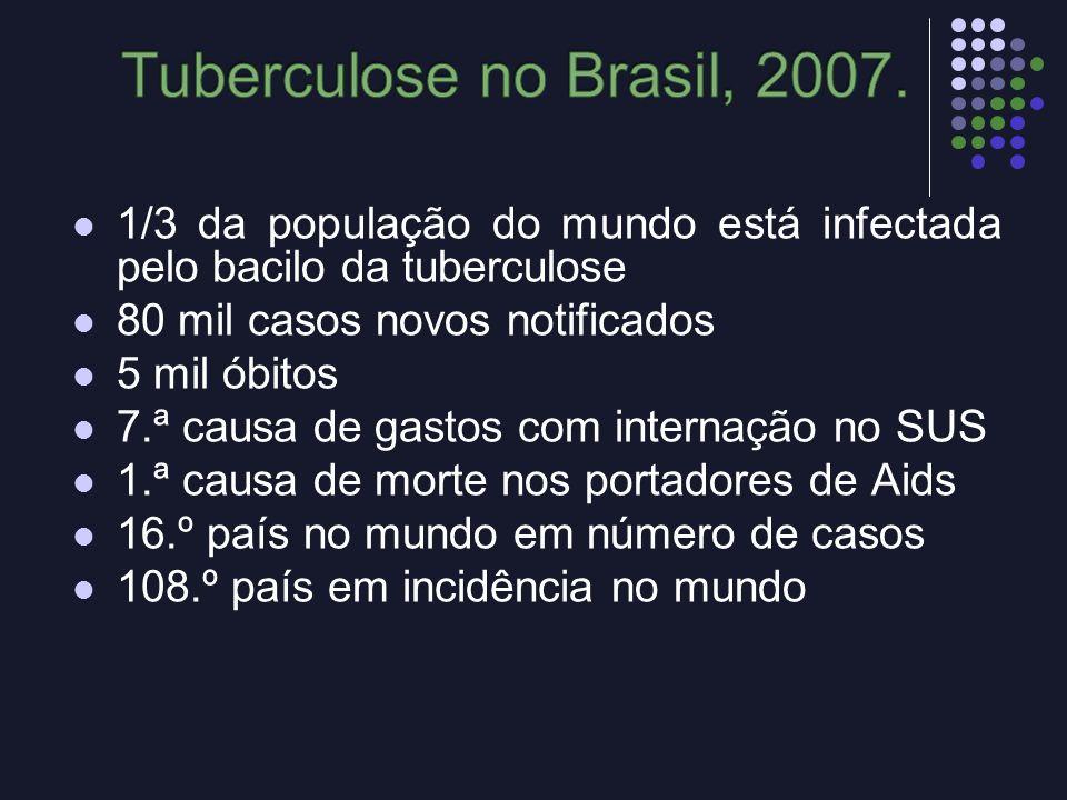 1/3 da população do mundo está infectada pelo bacilo da tuberculose 80 mil casos novos notificados 5 mil óbitos 7.ª causa de gastos com internação no