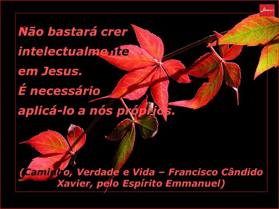 Não bastará crer intelectualmente em Jesus.É necessário aplicá-lo a nós próprios.