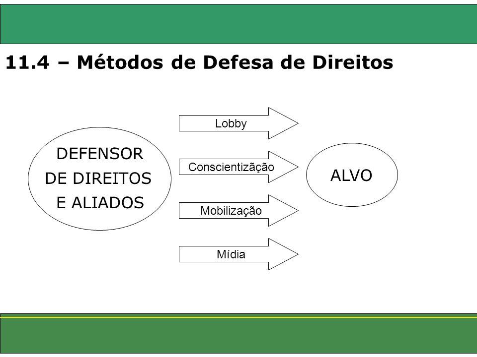 11.4 – Métodos de Defesa de Direitos DEFENSOR DE DIREITOS E ALIADOS Lobby ALVO Conscientizãção Mobilização Mídia