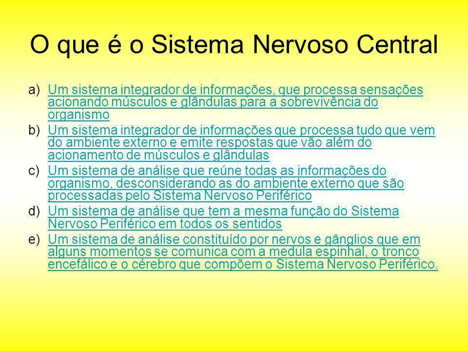 O que é o Sistema Nervoso Central a)Um sistema integrador de informações, que processa sensações acionando músculos e glândulas para a sobrevivência d