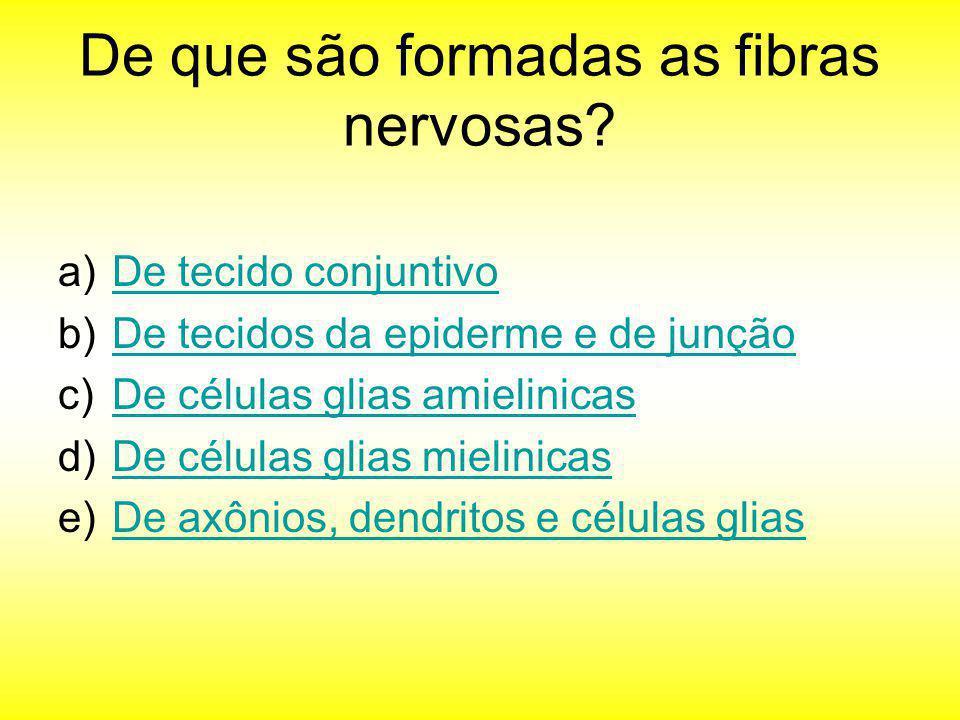 De que são formadas as fibras nervosas? a)De tecido conjuntivoDe tecido conjuntivo b)De tecidos da epiderme e de junçãoDe tecidos da epiderme e de jun