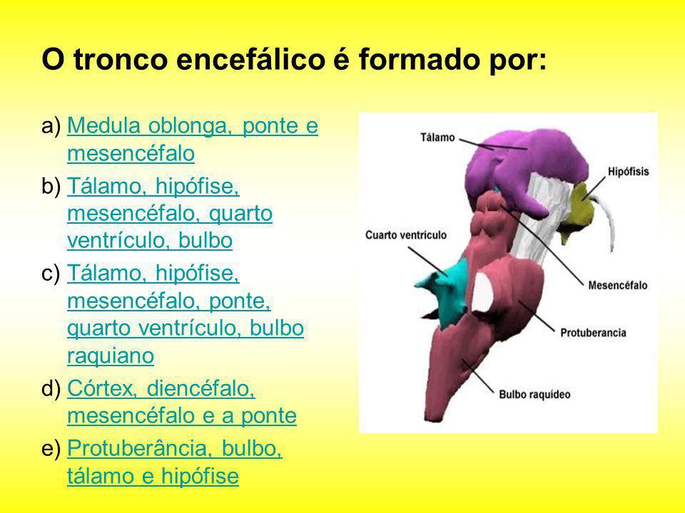 O tronco encefálico é formado por: a)Medula oblonga, ponte e mesencéfaloMedula oblonga, ponte e mesencéfalo b)Tálamo, hipófise, mesencéfalo, quarto ve
