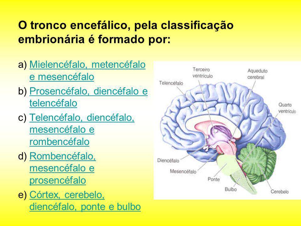O tronco encefálico, pela classificação embrionária é formado por: a)Mielencéfalo, metencéfalo e mesencéfaloMielencéfalo, metencéfalo e mesencéfalo b)