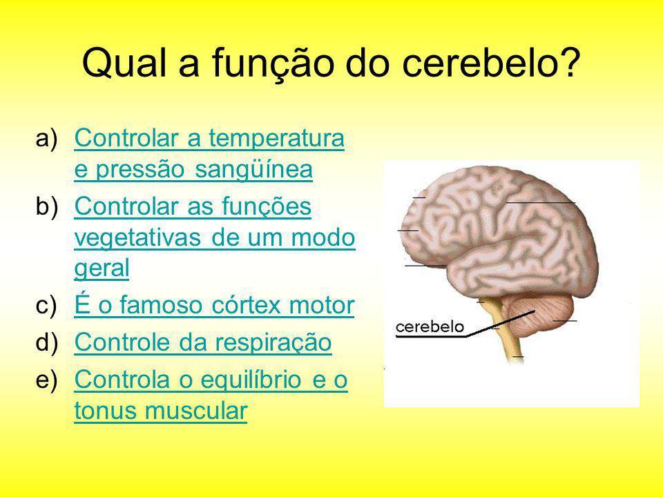 Qual a função do cerebelo? a)Controlar a temperatura e pressão sangüíneaControlar a temperatura e pressão sangüínea b)Controlar as funções vegetativas