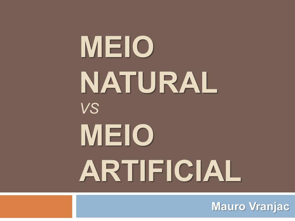 MEIO NATURAL MEIO ARTIFICIAL MEIO NATURAL VS MEIO ARTIFICIAL Mauro Vranjac