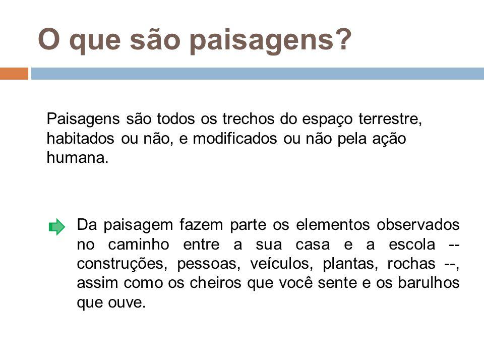 (caudal, volumoso em Tupi) é o nome dado a uma via expressa formada por conjunto de avenidas que se transformam fisicamente em apenas uma e que margeiam o rio Tietê na cidade de São Paulo, Brasil.