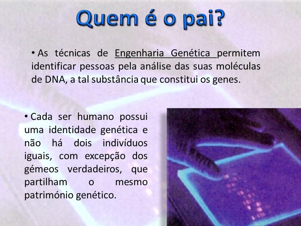 As técnicas de Engenharia Genética permitem identificar pessoas pela análise das suas moléculas de DNA, a tal substância que constitui os genes.