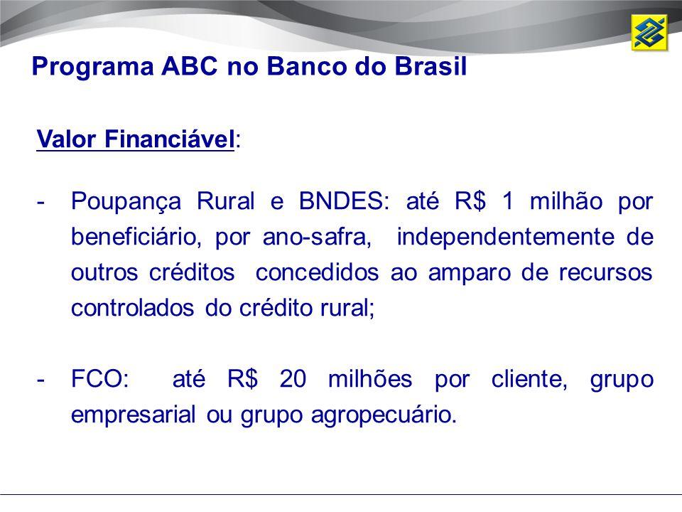 Valor Financiável: -Poupança Rural e BNDES: até R$ 1 milhão por beneficiário, por ano-safra, independentemente de outros créditos concedidos ao amparo