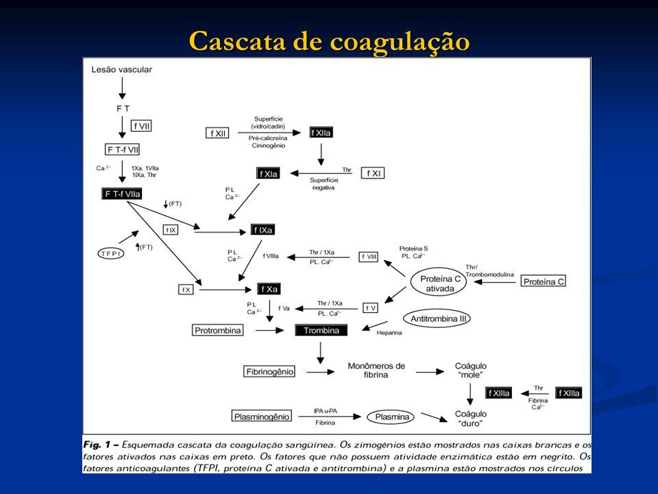 Cascata de coagulação
