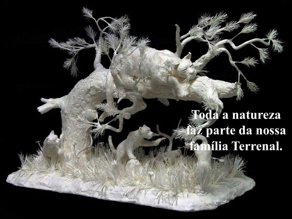 A natureza não é para nós, ela é uma parte de nós.