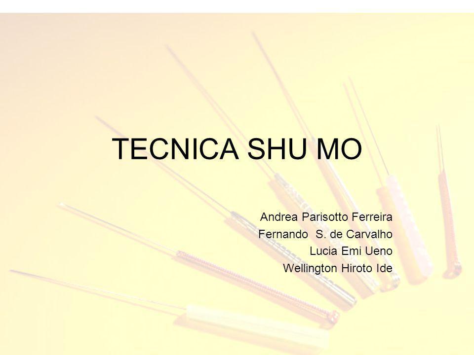 TECNICA SHU MO Andrea Parisotto Ferreira Fernando S. de Carvalho Lucia Emi Ueno Wellington Hiroto Ide