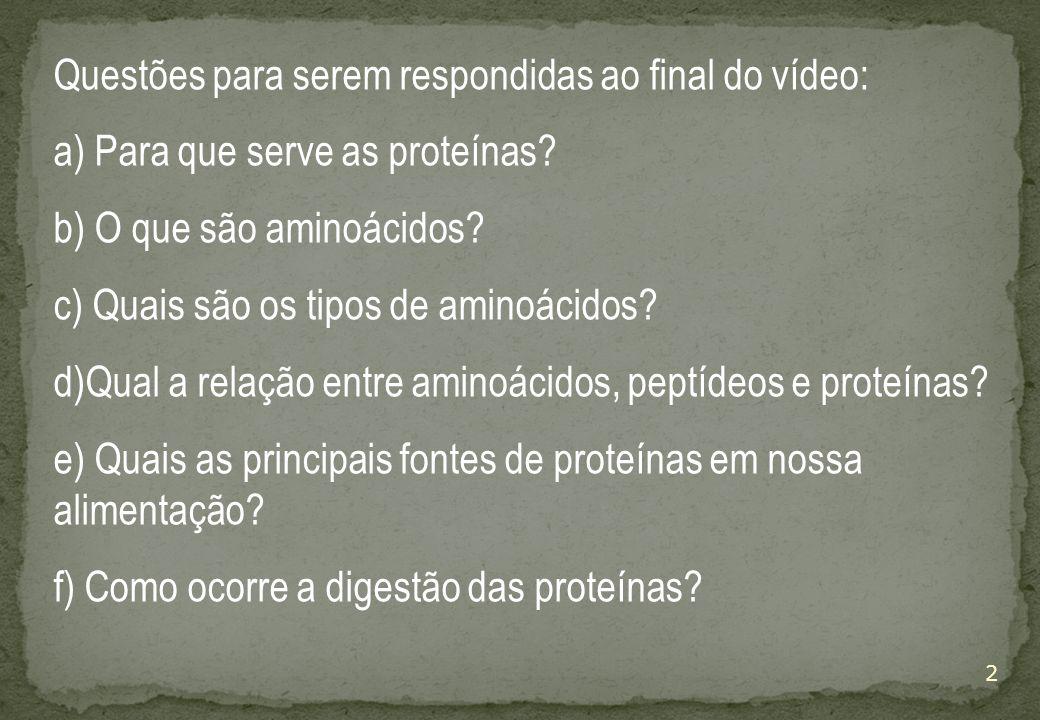 2 Questões para serem respondidas ao final do vídeo: a) Para que serve as proteínas.