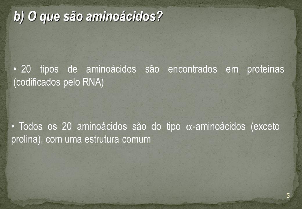 5 b) O que são aminoácidos.